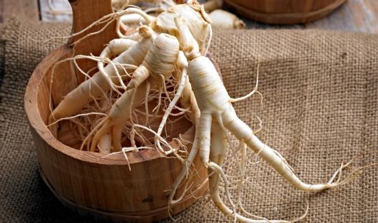 A History Of Ginseng
